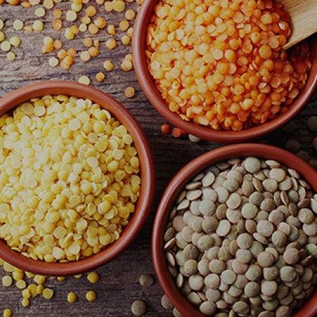 Lentils: The World's Oldest Crop